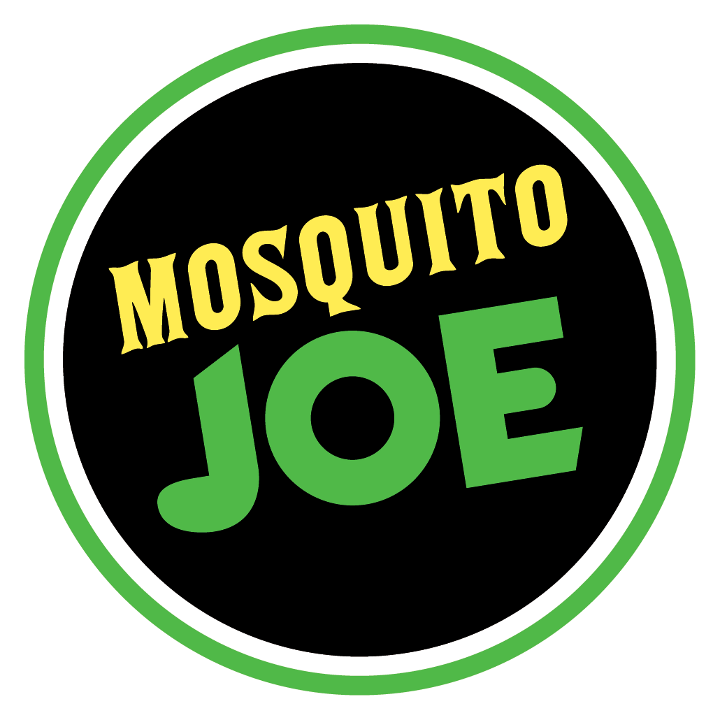Image result for mosquito joe